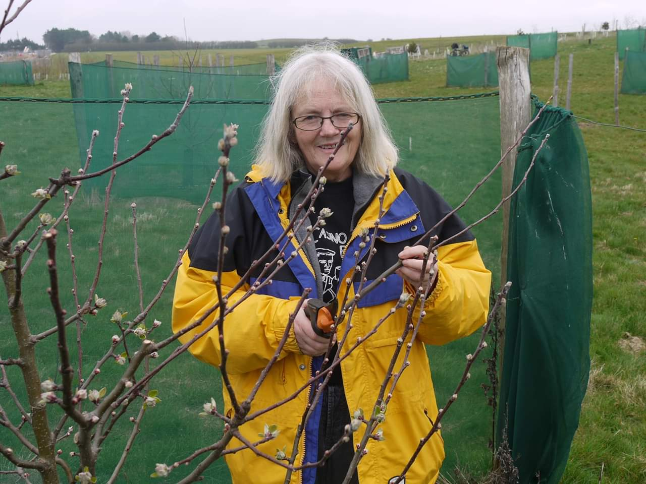 Peacehaven Community Orchard