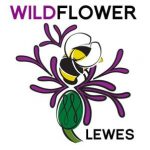 Wildflower Lewes Logo