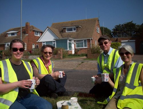 Introduction to the Seaford Tree wardens