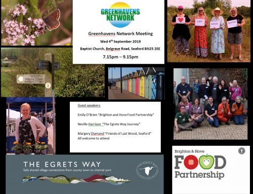 Greenhavens Network Meeting 4 September