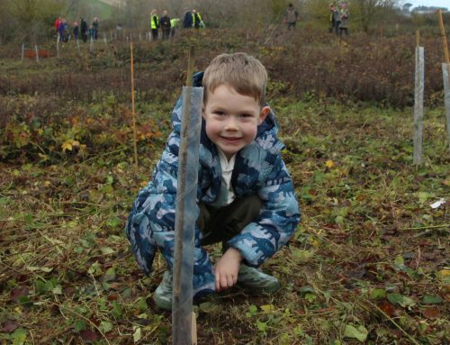 Tree-mendous effort by Newhaven community – over 800 new trees!