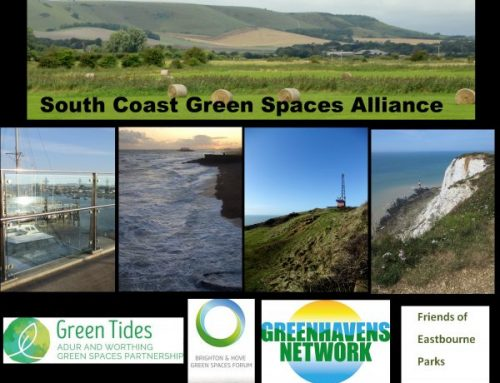 South Coast Green Space Alliance – joining up Sussex green havens