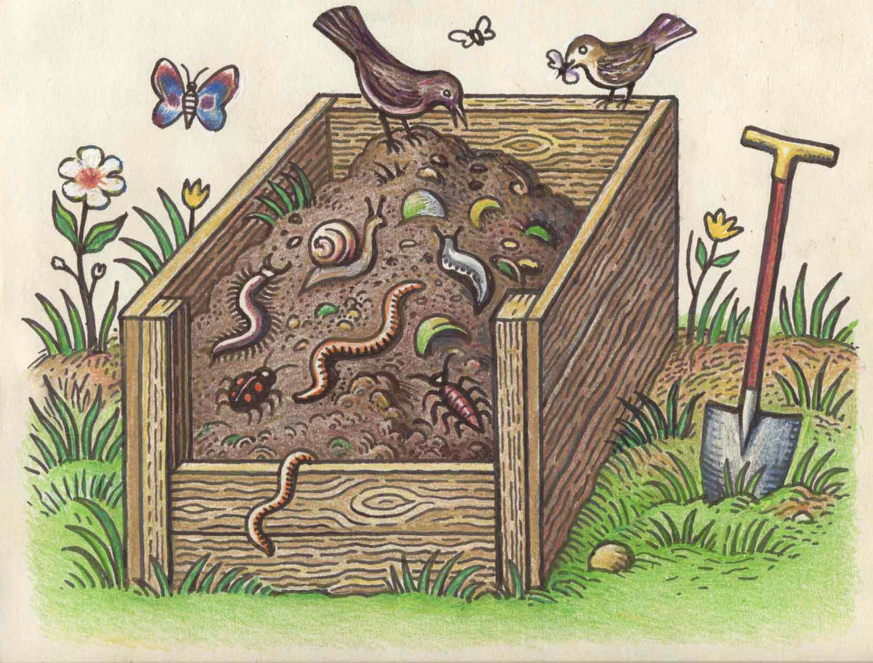Compost Illustration